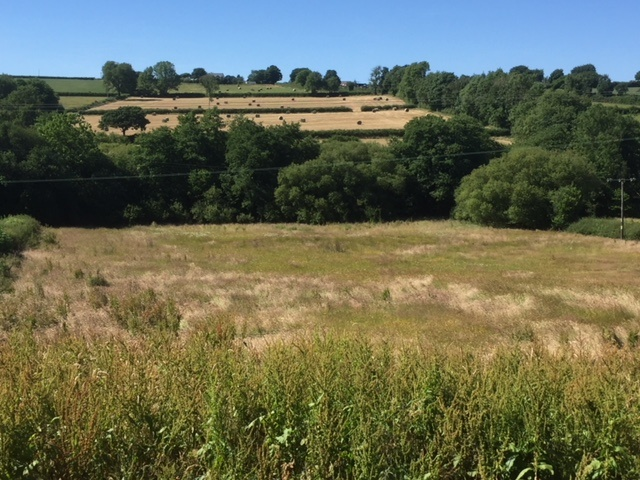 A rare opportunity to find a small parcel of land in beautiful open countryside